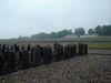 Buchenwald_steinar